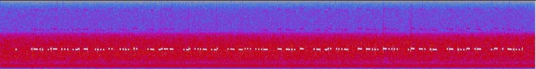 Spectrogram of the audio…